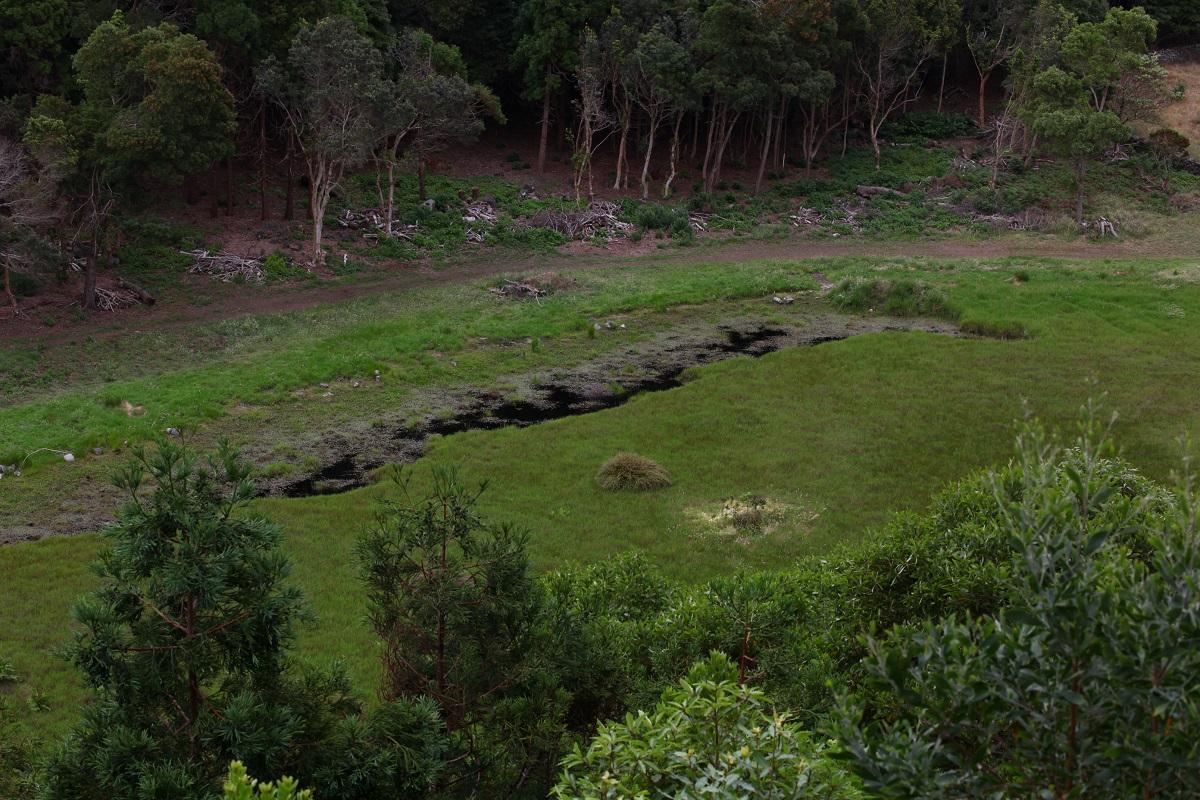 Park inmitten des Vulkans