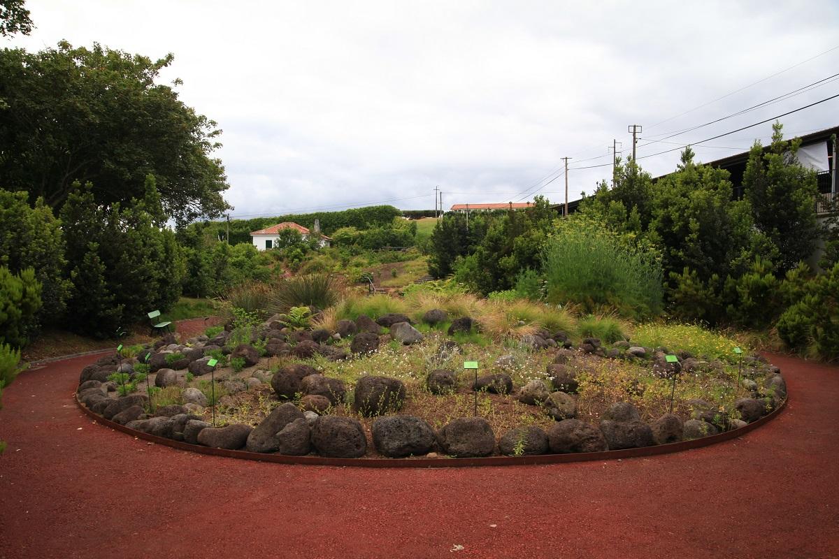 im Jardim Botanico do Faial