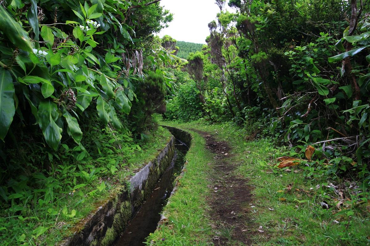 Wanderung entlang der Levadas
