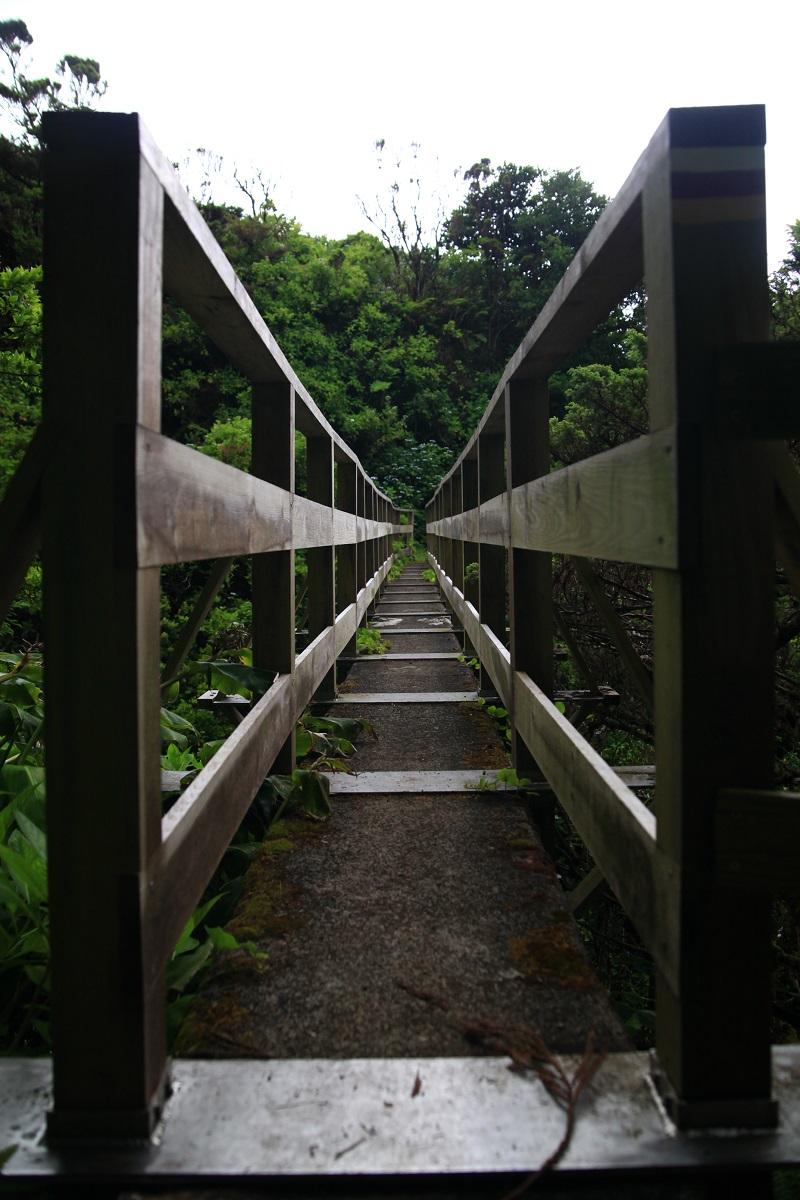 Brücke entlang der Levadas