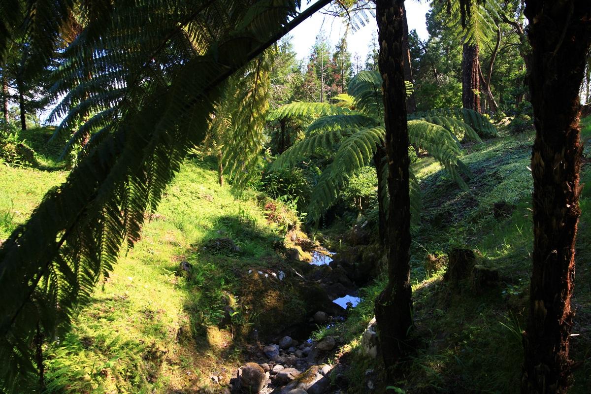 im Naturpark