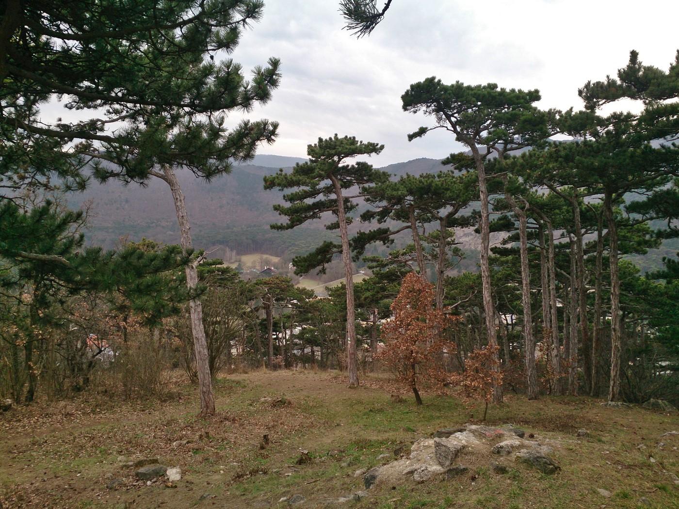 Ausblick vom Pfefferbüchsel