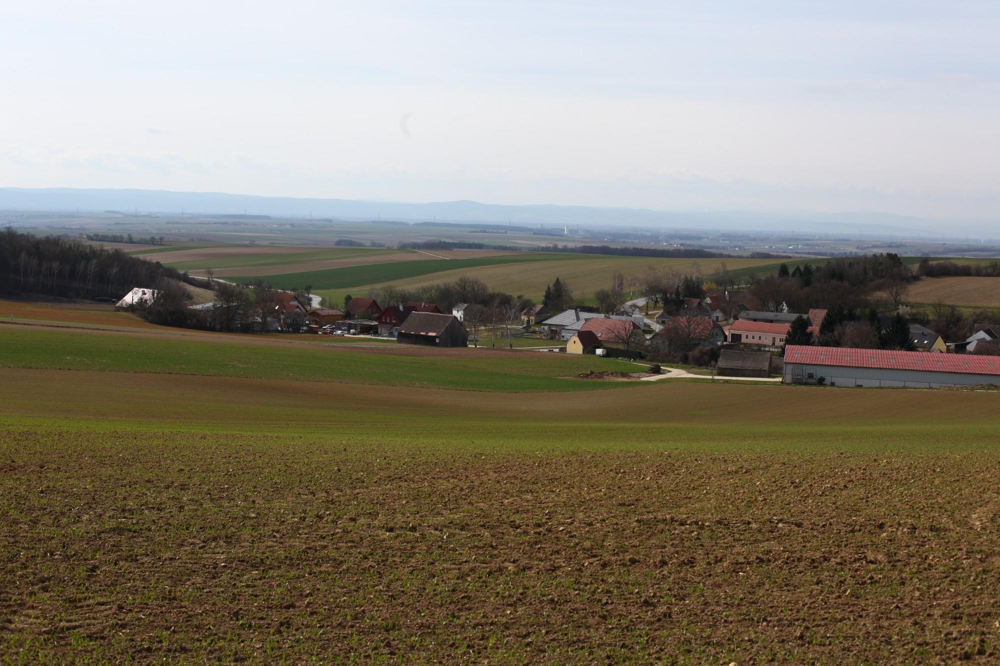Blick auf Ringendorf